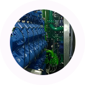 Centrali di Cogenerazione Biomasse e Biogas